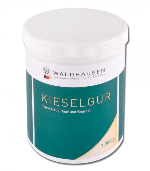 Kieselgur, 1 kg: Stärkt Haut, Haar und Knorpel © Waldhausen GmbH