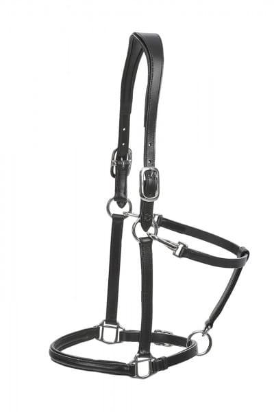 Halfter ANATOMIC, Leder © BUSSE GmbH