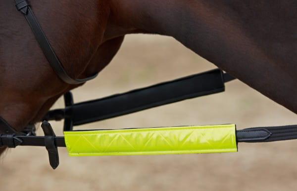 Reflektor für Zügel SHINE © BUSSE GmbH